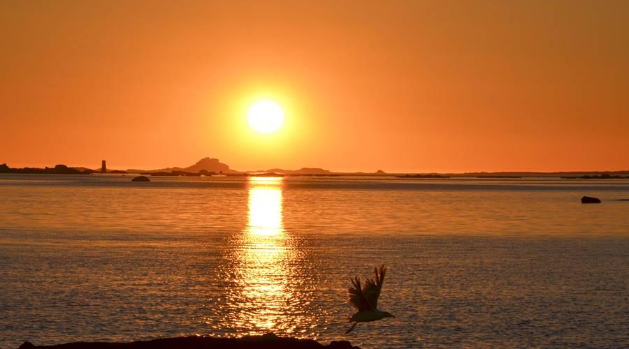 Playa Mexilloeira - Visit O Salnés ® by Paco Luna